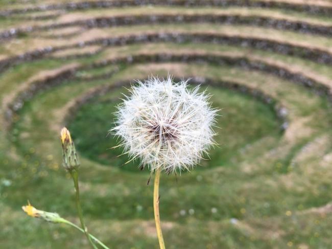 gwennap_circles